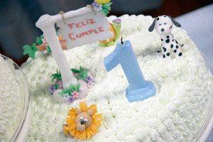 Cómo organizar la fiesta de primer cumpleaños