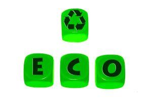 Cómo organizar un evento ecológico