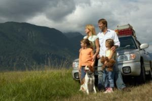 Cómo organizar un viaje con tu mascota