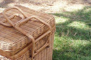 Planear un picnic de primavera con niños